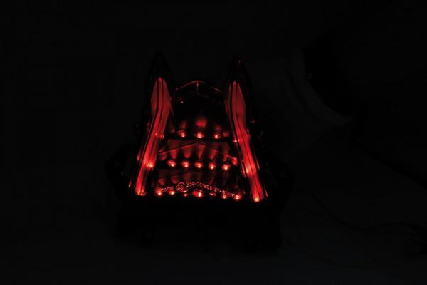 [253-391] LED bakljus för BMW S 1000 RR