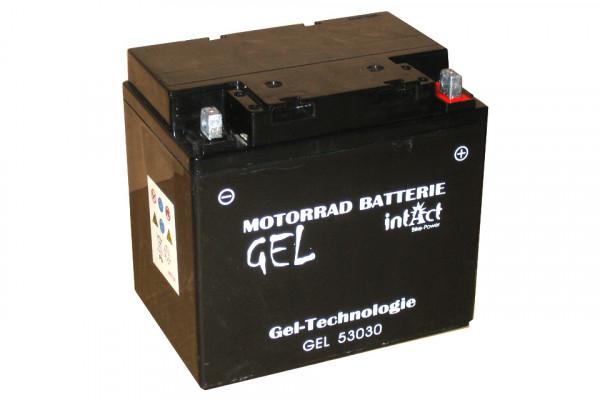 [299-110] Bike Power batteri GEL C60-N30L-A