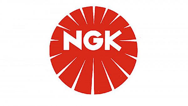 [212-218] Spark plug NGK CPR9EAIX-9